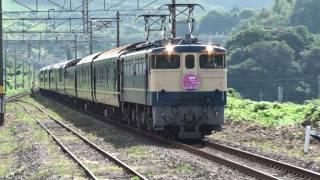 EF65牽引 トワイライトエクスプレス編成 団体臨時列車 埴生駅通過 2011.8.27