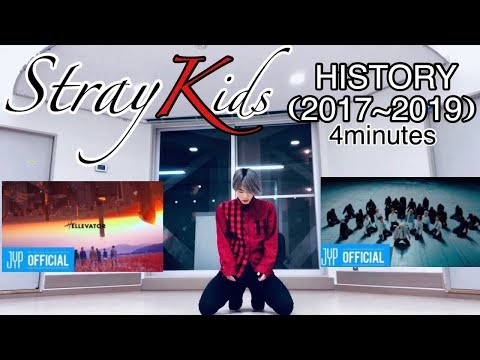 The HISTORY of STRAY KIDS  (2017~2019) in 4 minutes / Dance Cover