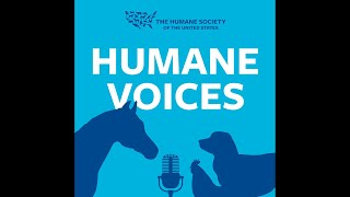 The future tastes like chicken... by The Humane Society of the United States