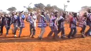 Tshikona dance is a cultural dance that the venda people do mostly in important events, like the placing of a new king or the death or marriage of a king.