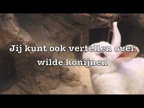 Spreekbeurt Konijnen! Filmpje over een konijnenspreekbeurt