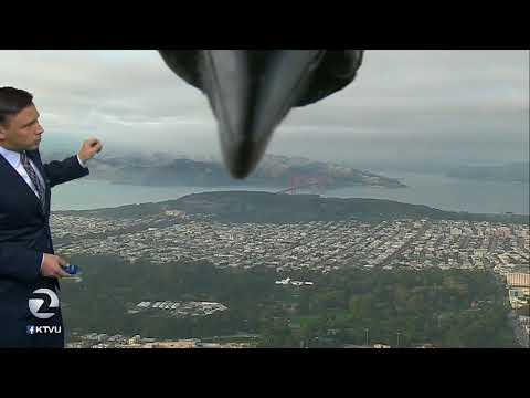 Curious Crow Photobombs Weather Report