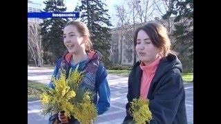 «Цветочный десант» на улицах Новороссийска