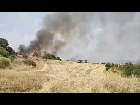 Пожар избухна между Мурсалево и Бучино