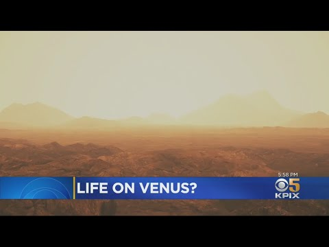 Phosphine Gas Discovered In Atmosphere Of Venus Could Hint At Extraterrestrial Life