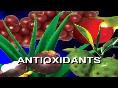 Importance of Antioxidants - Hindi