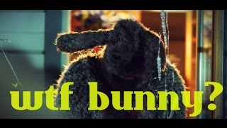 Bunny the killer thing (2015) - RECENZJA #11
