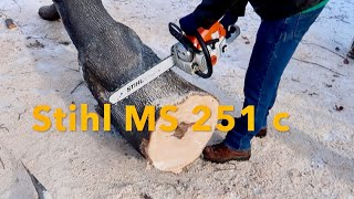 8. Stihl MS 251 cbe Chainsaw in Action / Cutting Up A Tree
