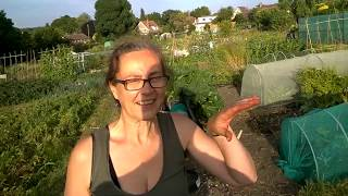 Sustainability TV – Get Diggin it – Part 1