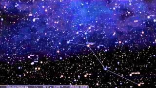 Sternbild Eidechse/Lacerta Animation