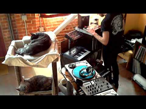 WORKER/PARASITE - Wax n' Cats #9 Liveset (2013)