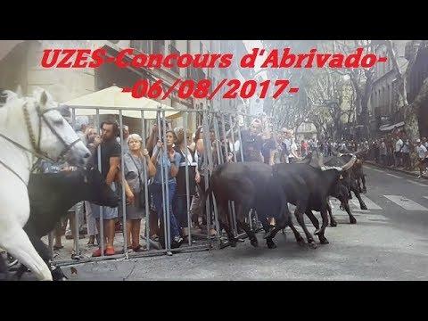 UZES-Concours d'Abrivado-06/08/2017