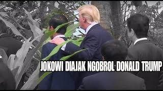 Video Tiba-tiba Jokowi ditepuk Pundaknya oleh Donald Trump diajak Ngobrol MP3, 3GP, MP4, WEBM, AVI, FLV Mei 2019