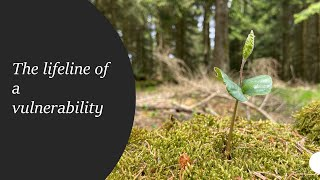 The lifeline of a vulnerability - 4k