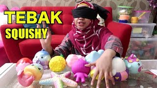 Video BLIND HUNTING SQUISHY (TEBAK SQUISHY) wkwkwk MP3, 3GP, MP4, WEBM, AVI, FLV Januari 2019