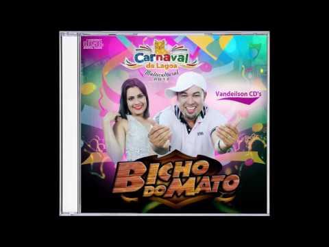 Banda Bicho do Mato - Ao Vivo No - Carnaval de Lagoa Dos Gatos - PE 27.02.2017