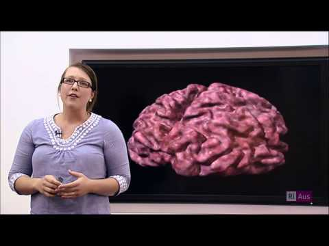 Dr Hannah Keage, Lecturer