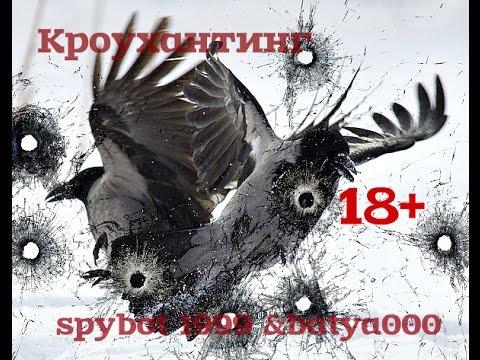 Crow hunting EDgun Matador 7,62 (ПРАДЕД) По воронам из пушки. (видео)