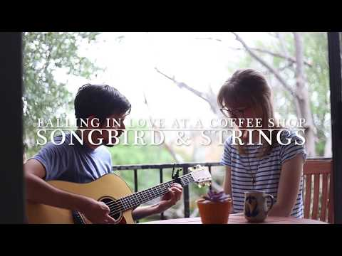 Songbird & Strings - Falling In Love At A Coffee Shop (Landon Pigg Cover)