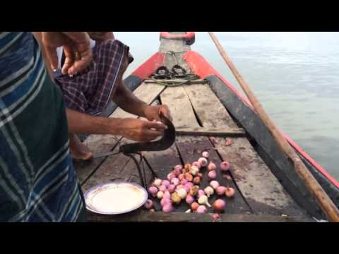 Amazing Cooking Chicken On A Boat In Bangladesh