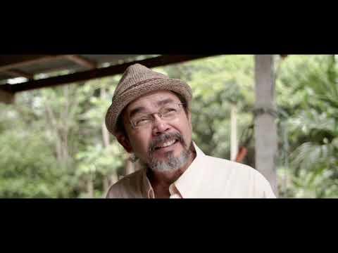 """thaihealth ภาพยนตร์สั้นเรื่อง """"ภาพหน้าร้อนที่หายไป"""" (Trailer)"""