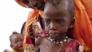 Food Security Situation in northeastern Nigeria, Somalia, South Sudan and Yemen