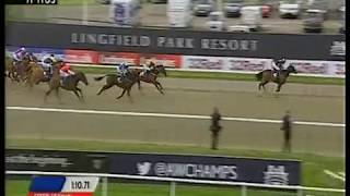 HnR 's Living the Life wins Fillies Mares All Weather Championship @Lingfield April 18 2014