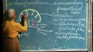 Integrative Biology 131 - Lecture 18:  Lymphatic System