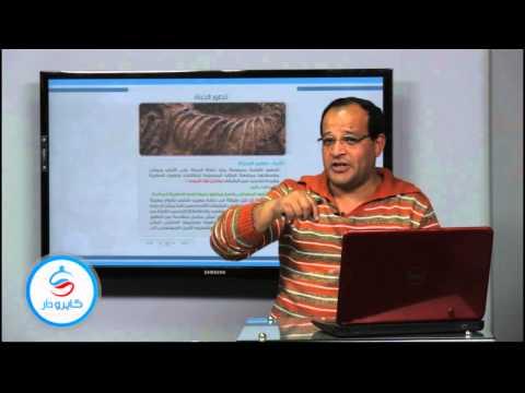 جيولوجيا - الباب السادس| طرق قياس الزمن الجيولوجى