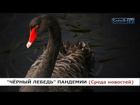 «ЧЁРНЫЙ ЛЕБЕДЬ» ПАНДЕМИИ («Среда новостей»)