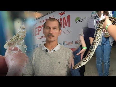 Змеи, ящерицы, дети? Рептилиум для всех!