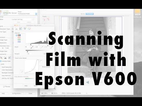 Scanning Film w/ Epson V600