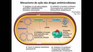 Nessa aula veremos conceitos sobre antibióticos, espectro de ação, tipos de ação, mecanismo de ação e toxicidade dos antibióticos