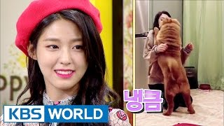 Video Seol Hyun danced to 'Excuse Me' in front of her dog, and...? [Happy Together / 2017.04.27] MP3, 3GP, MP4, WEBM, AVI, FLV April 2018