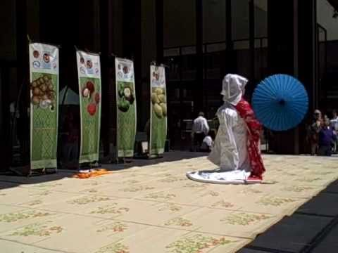 Asian American Festival at Daley Plaza