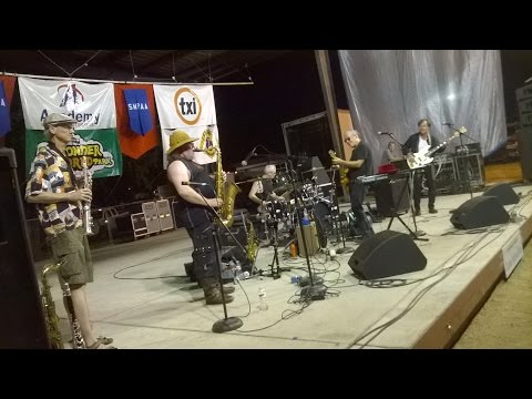 Brave Combo at Summer in the Park 2014 - July 31, 2014 (shakiness corrected)