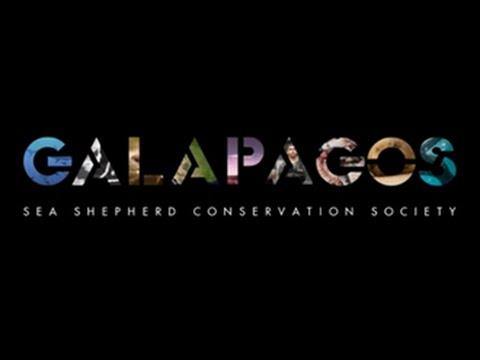 Sea Shepherd Galapagos documentary trailer