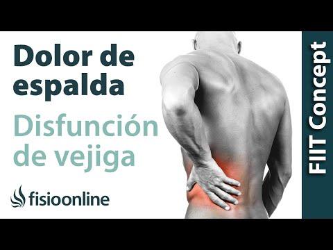 vejiga caida - Visita http://fisioterapia-online.com - Todo sobre fisioterapia En este vídeo hablamos sobre las patologias y procesos musculares y articulares que tienen co...