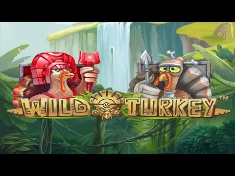 Wild Turkey Free Spins. Mega Big Win