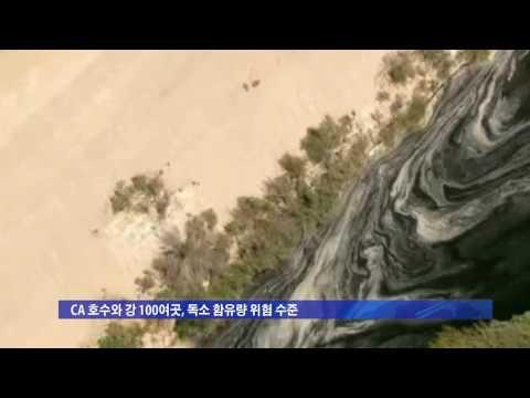 CA 강·호수 녹조현상 심각 8.5.16 KBS America News