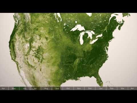 الارض الخضراء