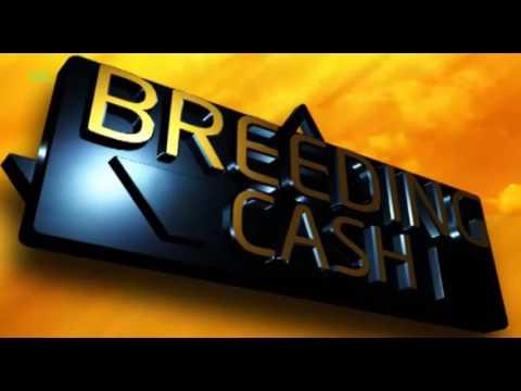 Breeding Cash: Value Addition