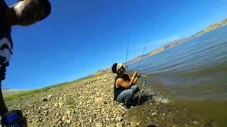 hmong striper  fishing san luis reservor august 2013(2)