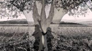 Video JIŘÍKOVO VIDĚNÍ - V poli strom (2013)