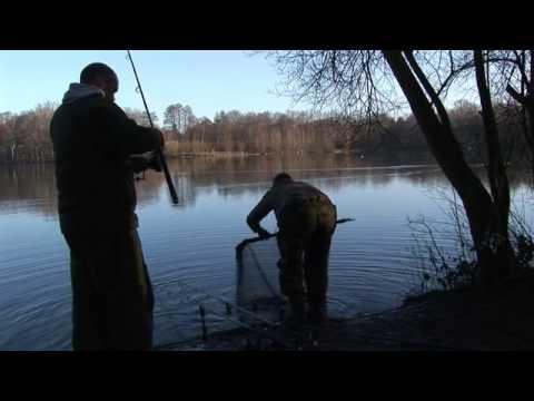 Sandhurst Lake Video Gallery