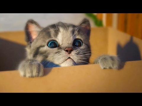 МОЙ Маленький КОТЕНОК СИМУЛЯТОР котика как мультик видео для детей виртуальный питомец #ПУРУМЧАТА