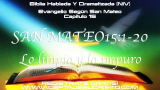 SAN MATEO - Capitulo 15 (BIBLIA HABLADA Y DRAMATIZADA) NVI