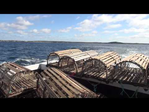 "Lobster Fishing with ""Miss Leary's Cove"""