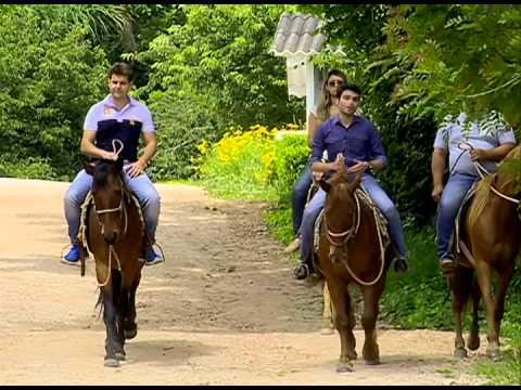 TURISMO RURAL: Fazenda das 100 árvores em Castro oferece diversas atividades para a família ....
