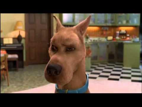 ScoobyDoo PL Najśmieszniejsze Sceny z Filmów xD cz.1